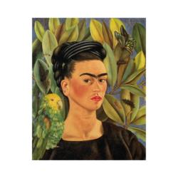 Frida Kahlo doğal portre çizilmiş boyamaya hazır tuval