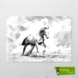 at çizilmiş resim tuvali